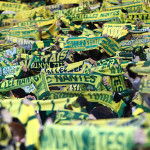 Le chant des Canaris